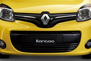 kangoo_10
